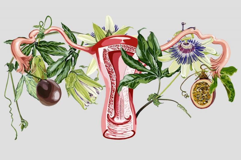 Endometriózis betegség - 8 érdekes kérdés és válasz